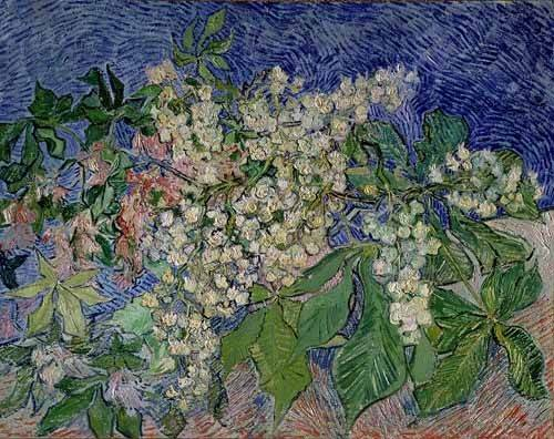 quadros-de-paisagens - Quadro -Ramas de castaño en flor- - Van Gogh, Vincent