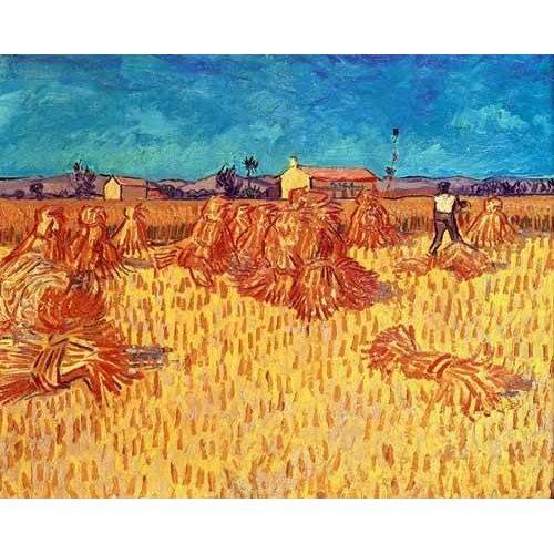 Quadro -Campo de cereales con gravillas-