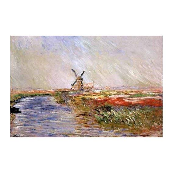 pinturas de paisagens - Quadro -El campo de tulipanes, Holanda-