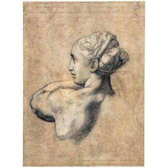 - Quadro -Head_of_a_Woman- - Rafael, Sanzio da Urbino Raffael