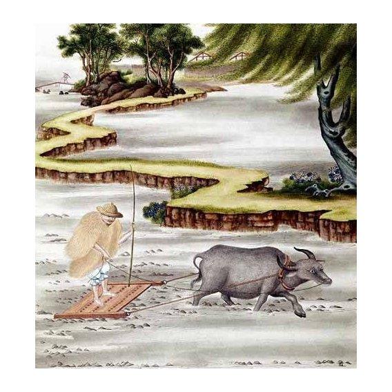 imagens étnicas e leste - Quadro -Campesino labrando el arrozal-