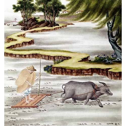 ethnic and oriental paintings - Picture -Campesino labrando el arrozal-
