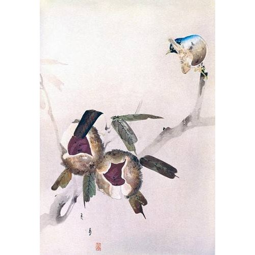Quadro -Pequeño pajaro sobre una rama de castaño-