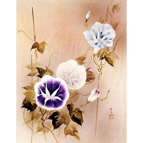 Quadro -Enredadera con flores moradas y azules-