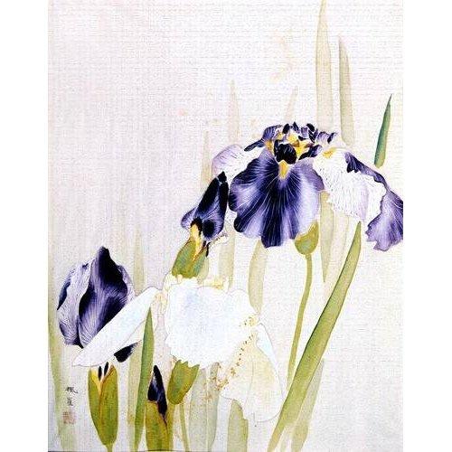 Quadro -Lirios violáceos-
