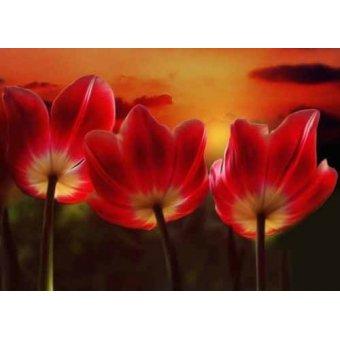 quadros de flores - Quadro -Moderno CM1455- - Medeiros, Celito