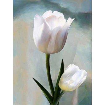 quadros de flores - Quadro -Moderno CM2038- - Medeiros, Celito