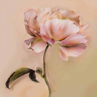 quadros de flores - Quadro -Moderno CM2478jb- - Medeiros, Celito