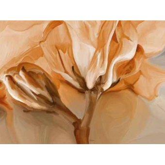quadros de flores - Quadro -Moderno CM3600- - Medeiros, Celito