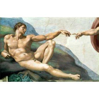 quadros religiosos - Quadro -La Creación De Adan- - Buonarroti, Miguel Angel