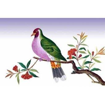 quadros de animais - Quadro -Pajaro sobre una rama- - _Anónimo Chino
