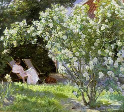 quadros-de-flores - Quadro -Line Roses (The artists wife at Skagen)- - Kroyer, Peder Severin