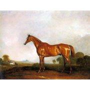 Cuadro -A Chestnut Hunter in a Landscape-