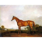 Quadro -A Chestnut Hunter in a Landscape-