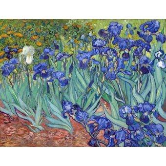 quadros de flores - Quadro -Irises, 1889- - Van Gogh, Vincent