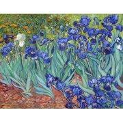 Quadro -Irises, 1889-