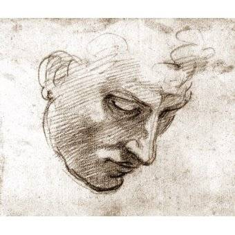 maps, drawings and watercolors - Picture -Studio di volto maschile- - Buonarroti, Miguel Angel