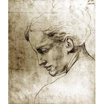 imagens de mapas, gravuras e aquarelas - Quadro -Volto di giovane visto di profilo- - Buonarroti, Miguel Angel