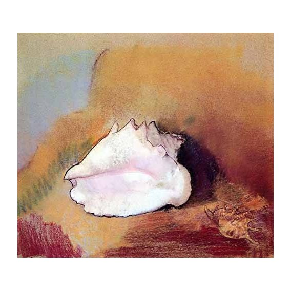Still life paintings - Picture -La concha de mar-