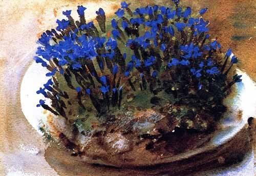 cuadros decorativos - Cuadro -Gencianas azules- - Sargent, John Singer