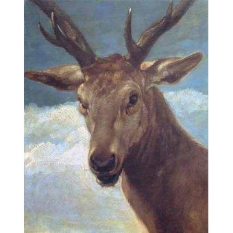 quadros de animais - Quadro -Cabeza de venado- (de caza) - Velazquez, Diego de Silva