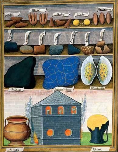 cuadros decorativos - Cuadro -Libro de las medicinas sencillas 2- - Platearius, Matthaeus