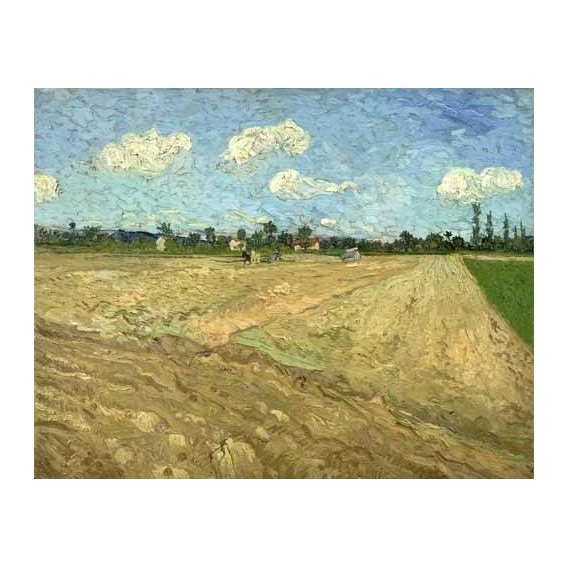 pinturas de paisagens - Quadro -Ploughed fields (The furrows), 1888-