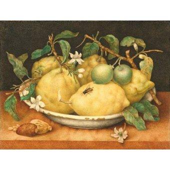 cuadros de bodegones - Cuadro -Bodegón con cesto de limones- - Garzoni, Giovanna