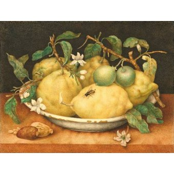 naturezas mortas - Quadro -Bodegón con cesto de limones- - Garzoni, Giovanna