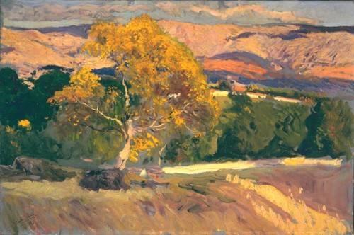 quadros-de-paisagens - Quadro -Arbol Amarillo, La Granja, 1906- - Sorolla, Joaquin