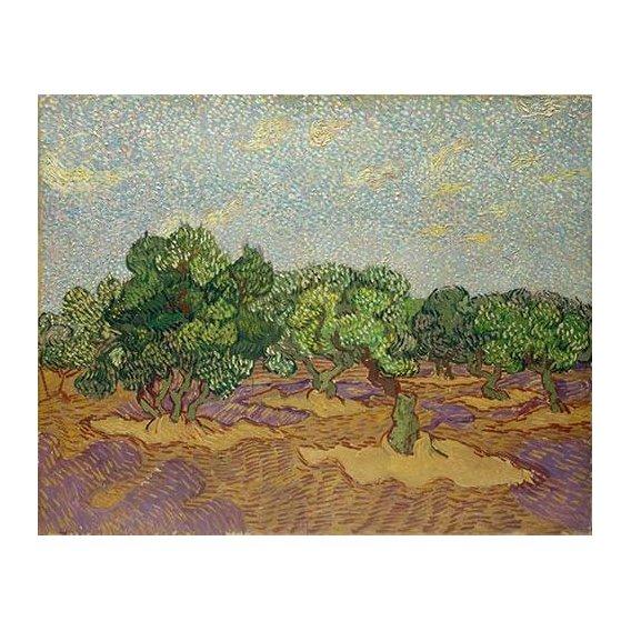 pinturas de paisagens - Quadro -Olivos-