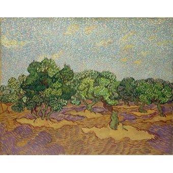 - Quadro -Olivos- - Van Gogh, Vincent