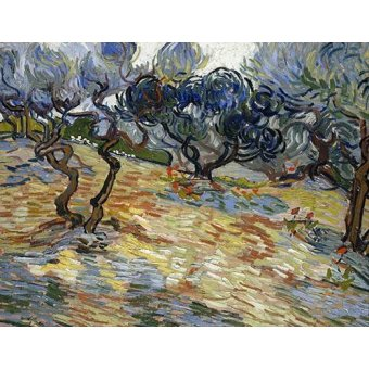- Quadro -Olive Trees, 1889- - Van Gogh, Vincent
