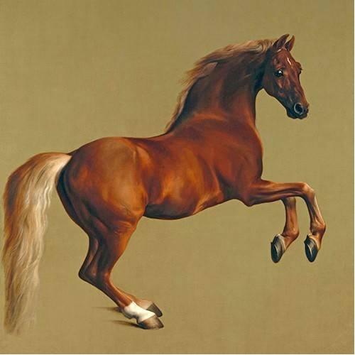 Quadro -Whistlejacket- (caballos)