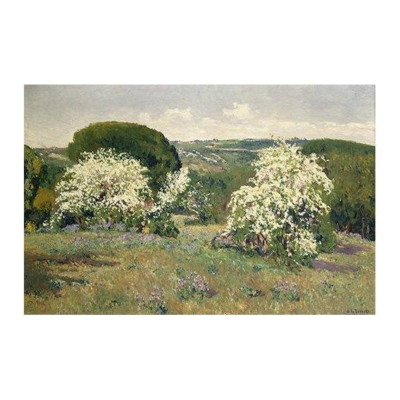 pinturas de paisagens - Quadro -Espinos en flor-