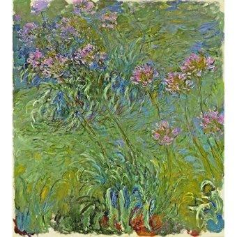 quadros de flores - Quadro -Flores de agapantus, 1914- - Monet, Claude