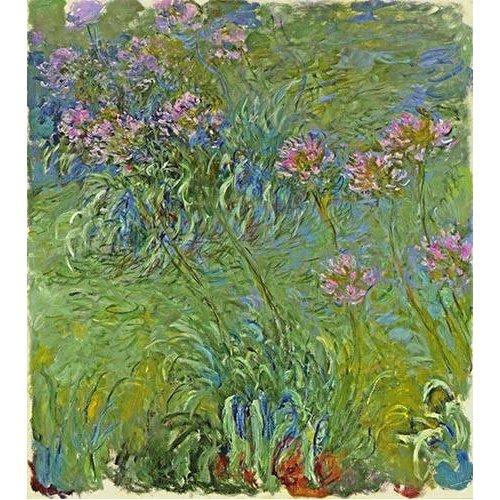 Quadro -Flores de agapantus, 1914-