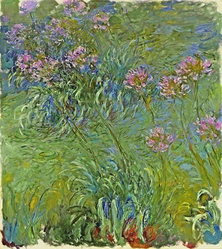quadros-de-flores - Quadro -Flores de agapantus, 1914- - Monet, Claude