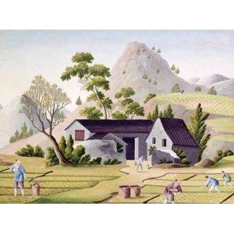quadros étnicos e orientais - Quadro -Campesinos en los arrozales- - _Anónimo Chino