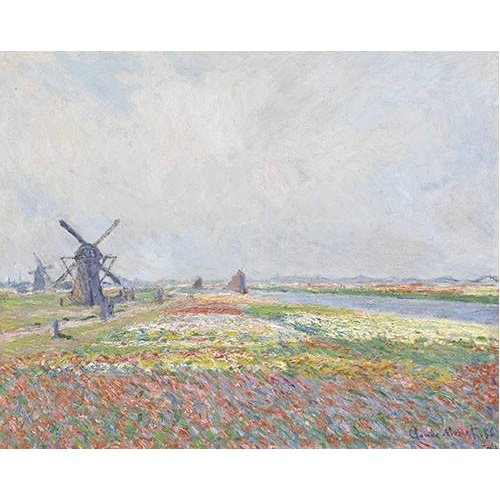Quadro -Tulip Fields near The Hague, 1886-