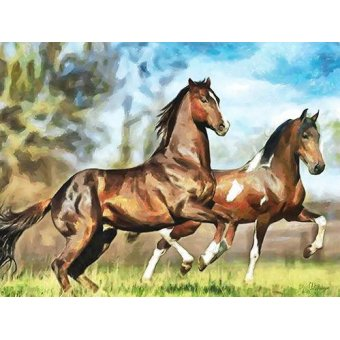 quadros de animais - Quadro -Moderno CM10537- (caballos) - Medeiros, Celito