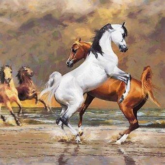 quadros de animais - Quadro -Moderno CM12147- - Medeiros, Celito