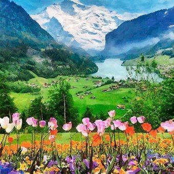 quadros de flores - Quadro -Moderno CM12232- - Medeiros, Celito
