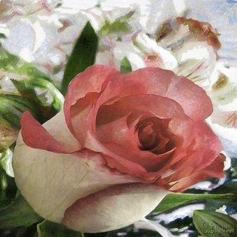 quadros de flores - Quadro -Moderno CM10484- - Medeiros, Celito