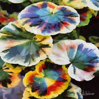 quadros de flores - Quadro -Moderno CM13198- - Medeiros, Celito
