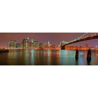 cuadros de fotografia - Cuadro -New York, nocturno- - Naturaleza, Fotografia de