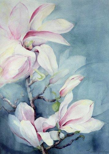quadros-de-flores - Quadro -Magnolia Soulangeana (vertical)- - Armitage, Karen