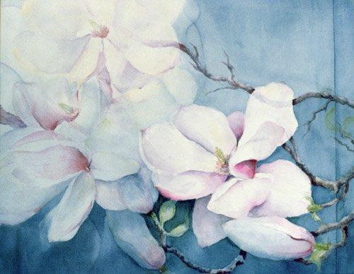 quadros-de-flores - Quadro -Magnolia Soulangeana (horizl)- - Armitage, Karen