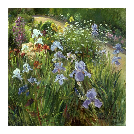 Quadro - Irises and Oxeye Daisies, 1997 -