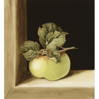 - Quadro -Apple (w.c on paper) - - Barron, Jenny